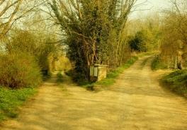 Orientamento: tutte le strade portano a…