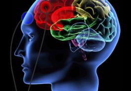 Stimolazione cerebrale per riabilitare la dislessia: la tecnica tDCS